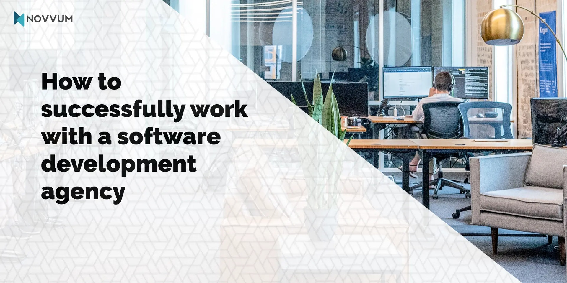 How to successfully work with a software development agency